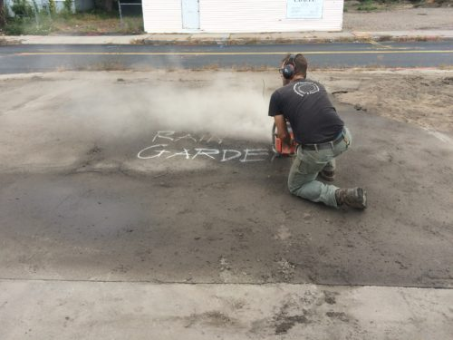 Asphalt to Asclepias: Springfield Rain Garden Project Continues