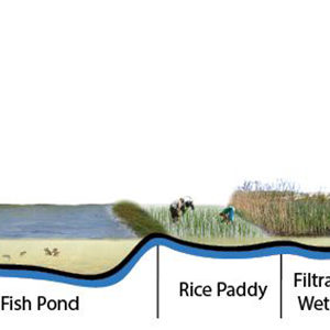 BRF PHOTO 5 Integrated Aquaculture Section Diagram