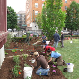 Volunteers Assisting With The Installation Of A Rain Garden At The Springfield Museum.