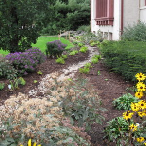 The Finished Garden At The Springfield Museum.