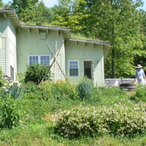 Wildside_BANNER_Wildside- House Side W Sue  Copy