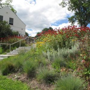 Another Shot Of Marlboro College Campus Gardens.