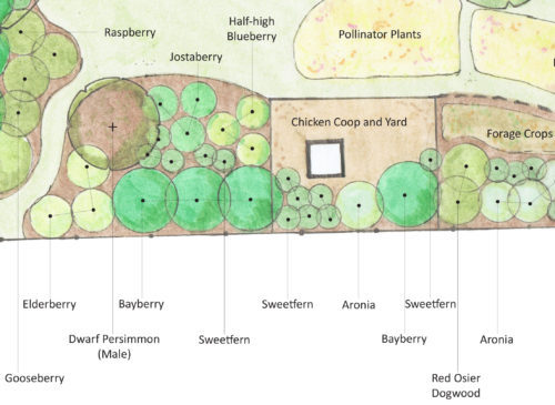 Montague Urban Homestead Landscape Design