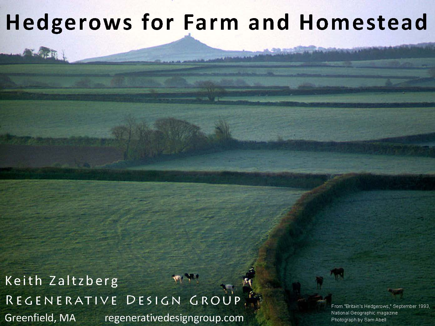 Pages From Hedgerows Windbreaks 2014KZ 3