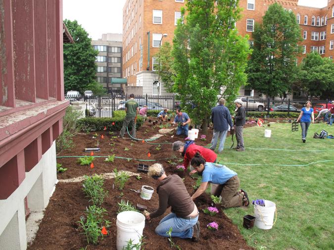 Springfield Rain Garden Project