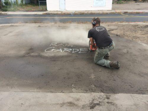 Asphalt To Asclepias: Springfield Rain Gardens