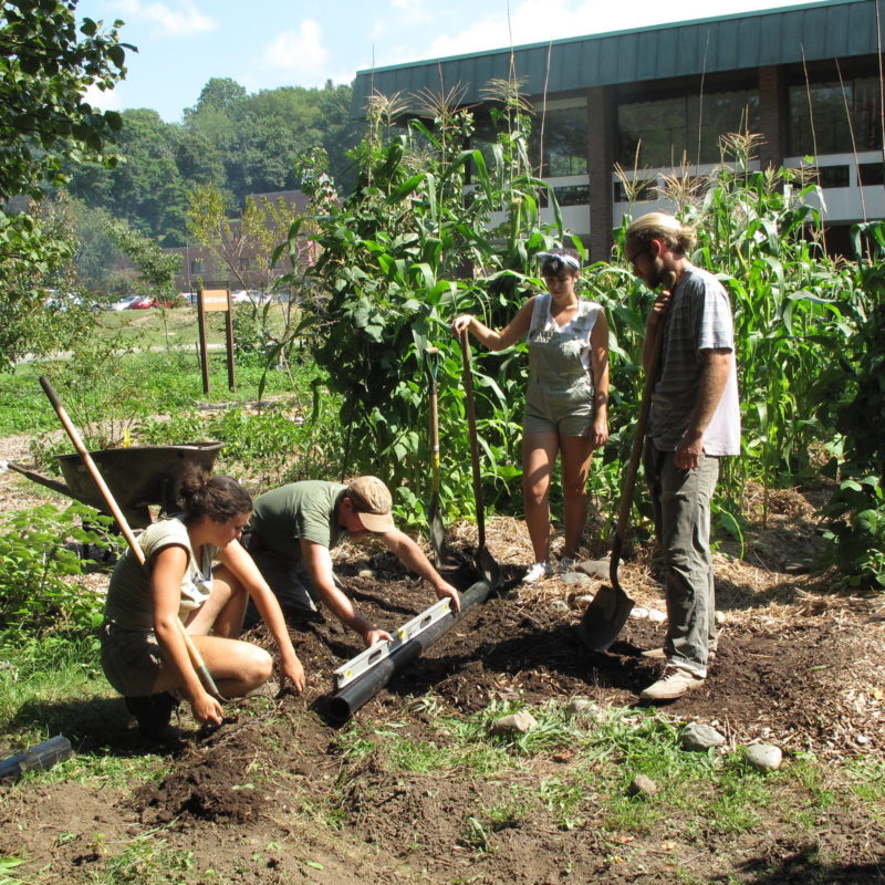 Students at UMASS Amherst have the opportunity to learn permaculture design through school gardens and a partnership with Regenerative Design Group. Here, Jono Neiger leads students in constructing a pond.