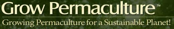 Intensive Permaculture Design Course, Florida